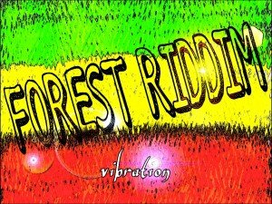FOREST RIDDIM vibration